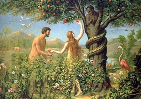 Apakah Hawa Tercipta dari Tulang Rusuk <a href='https://manado.tribunnews.com/tag/adam' title='Adam'>Adam</a>? - Islam Rahmah